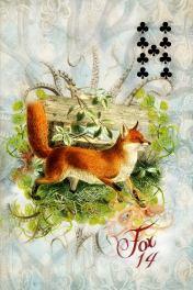 SSL 14 Fox